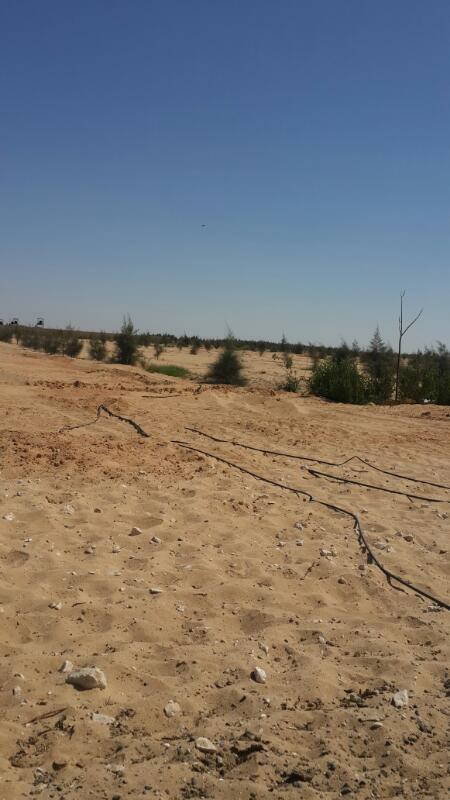ارض بجمعية وادى النيل