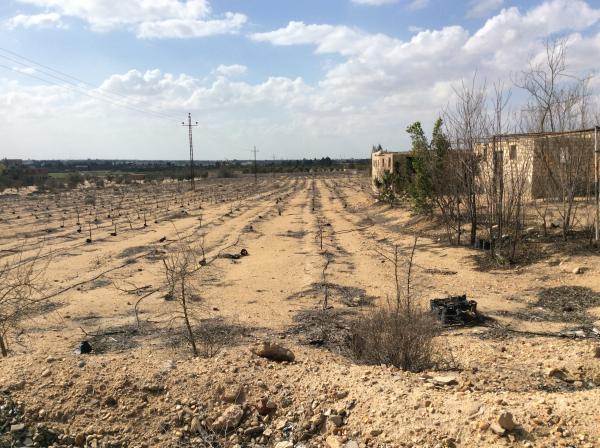 مزرعه 5 فدان للبيع طريق مصر اسكندريه الصحراوي | قرب مزارع دينا