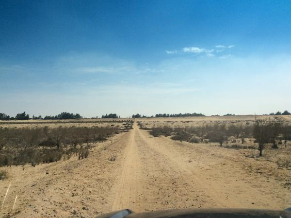 أرض  للبيع 70  فدان  | مدينة سفنكس الجديده |  طريق مصر اسكندريه الصحراوي| م